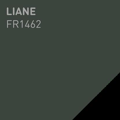 Bilde av Fargerike Inne Lameller FR1462 Liane pakker a 20