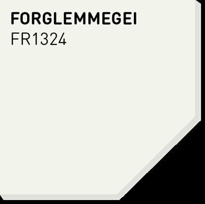 Picture of Fargerike Små Treprøver FR1324 Forglemmegei