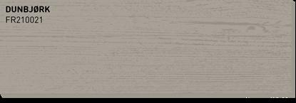Bilde av Fargerike Terrasse Treprøver FR210021 Dunbjørk